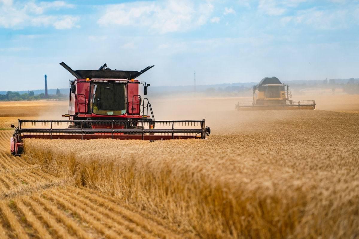 Landwirtschaft Profesionelle Übersetzung Übersetzungsbüro Wien Nativy